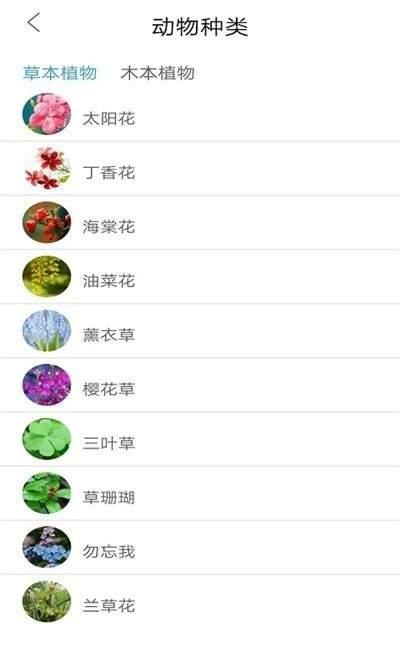 植物品鉴 图1