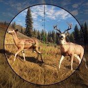 鹿射击狙击手